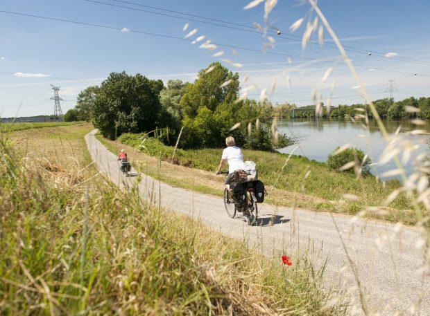 Loire à vélo Mosnes-Tours via Amboise