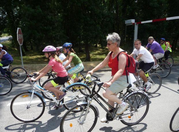 Loire & Terroir cycling trail