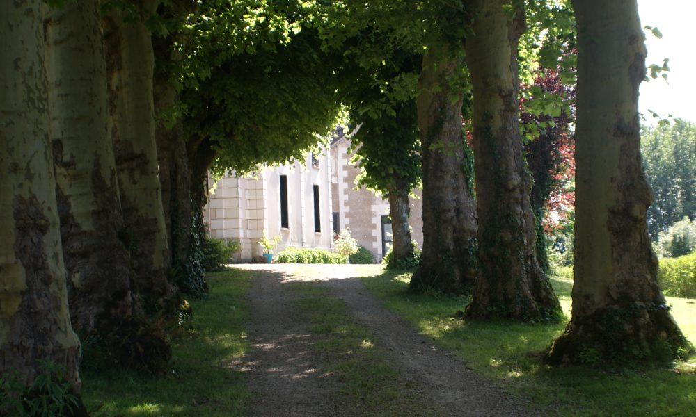 Chateau-de-la-Barre–18-
