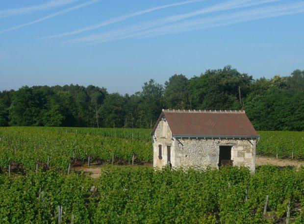 Domaine des champs gonneau