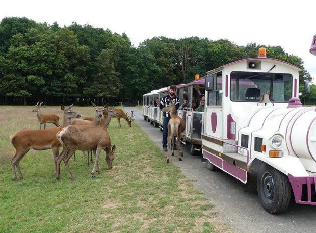 Beaumarchais Wildlife Park