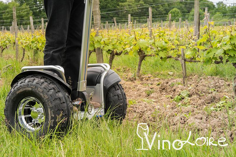 Vinoloire—Credits-Vincent-Delaby–7–2