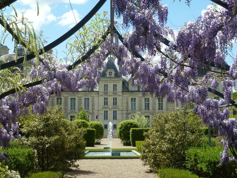 (291)chateau-cheverny©C