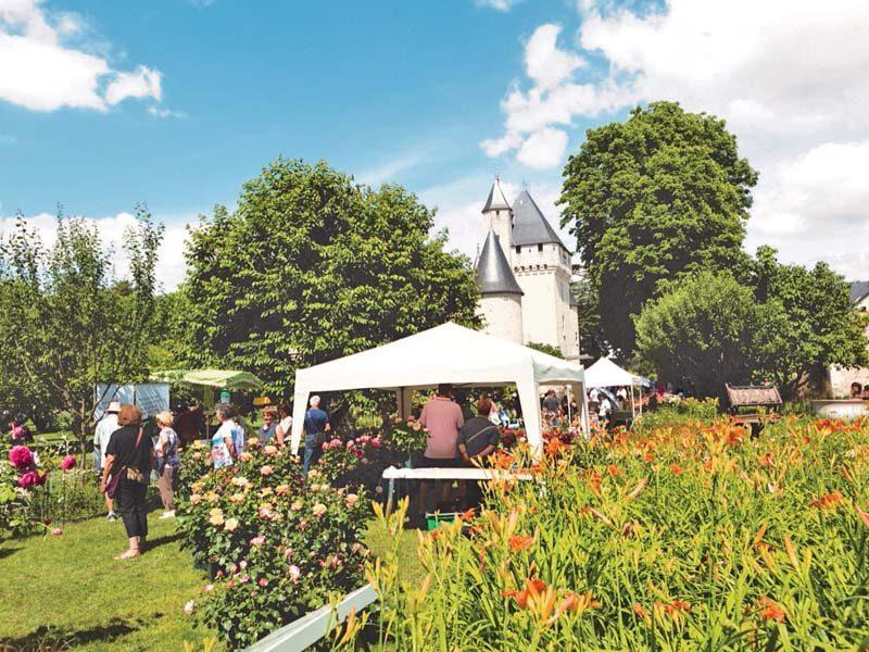 Rose festival – Loire Valley